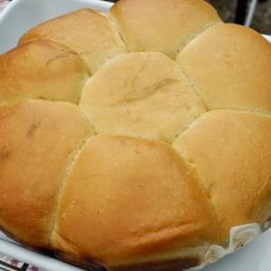 久しぶりキャンプはダッチでパン焼き