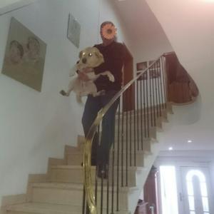階段 下りるのが怖い