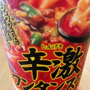 アップ忘れてたシリーズ2  東京タンメン トナリ 辛激ワンタンスープ