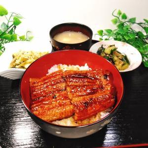 鰻の蒲焼き丼