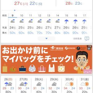 月末ぐらいに梅雨明け?