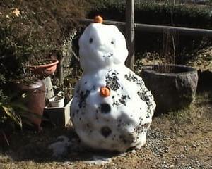 雪が無い 雪だるま