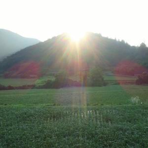 朝日と朝月