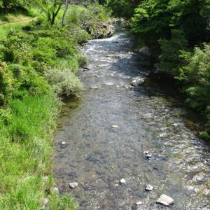 川清掃とゴミ拾い