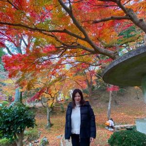 尾関山の紅葉、今こんな感じです。