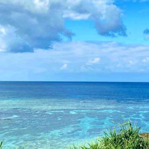 沖縄から帰ってきました。