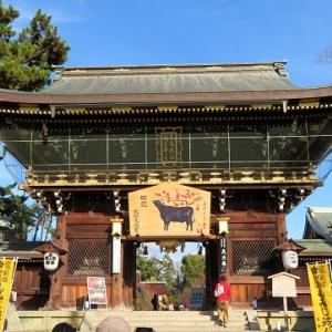 秋の京都一人旅/北野天満宮