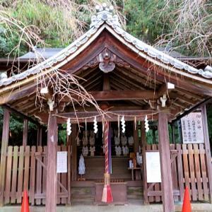秋の京都一人旅/大豊神社