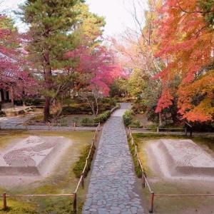 秋の京都一人旅・法然寺