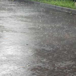 台風19号 武蔵野市内の被害状況