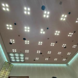 二度目の改修へ  武蔵野市議会 本会議場の天井