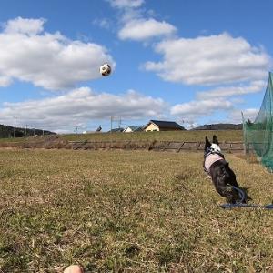 ボールが一番。