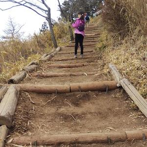 整備された粟ヶ岳ハイキングコース