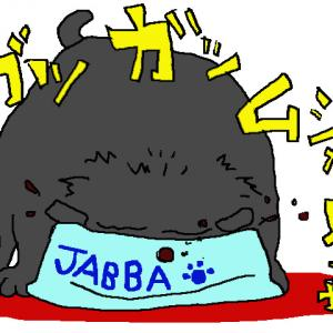 ジャバの珍事件