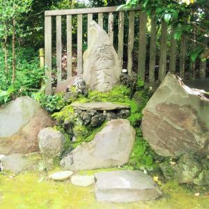 お散歩ランで根津神社へ