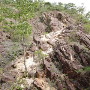 秋の山歩き(4)-湖南アルプス(太神山不動寺・矢筈ヶ岳)