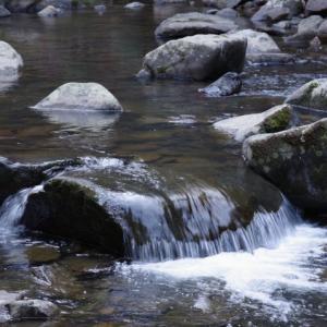 冬の山歩き(3)-鎌倉峡