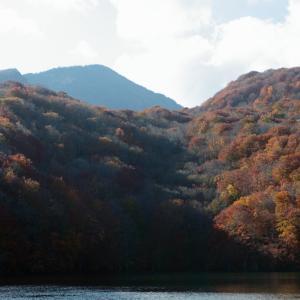 十和田市 蔦沼の紅葉 その2