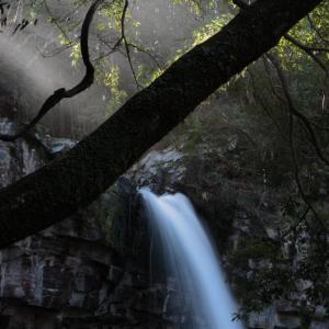 伊豆市 萬城の滝 おまけ