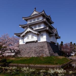 行田市 忍城の桜 その4