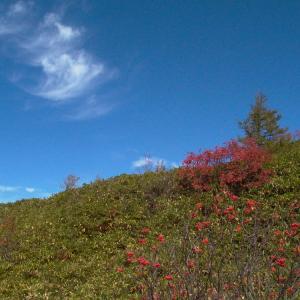 思い出の撮影行 白根・弓池の紅葉 前半
