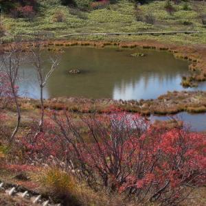 思い出の撮影行 白根・弓池の紅葉 後半