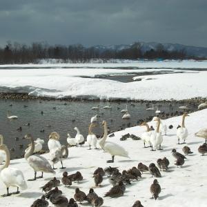 思い出の撮影行 2003年東北の冬 1