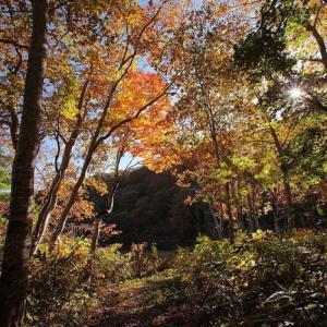 糸魚川市 蓮華白池の紅葉 その2
