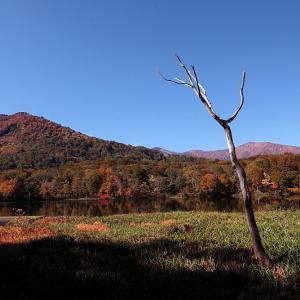 糸魚川市 お昼時の蓮華白池の紅葉 前半