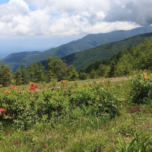 富士見町 入笠山 山野草公園 ラスト