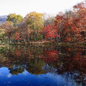 過去写真から 福島 観音沼の紅葉 前半