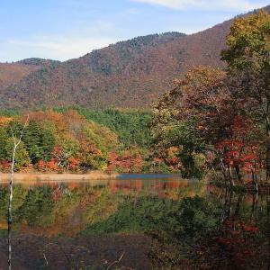 過去写真から 福島 観音沼の紅葉 後半