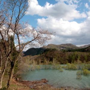 西和賀町 錦秋湖に沈む新緑 その4