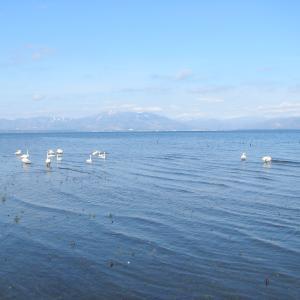 猪苗代湖南岸