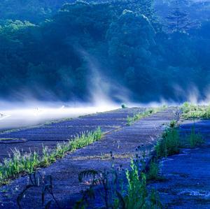 家棟川上流の川霧