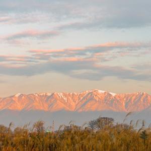 現れた比良山系のモルゲンロート