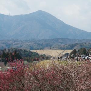 たおやかな山「時の烏帽子岳」