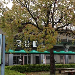 第16回琵琶湖一周