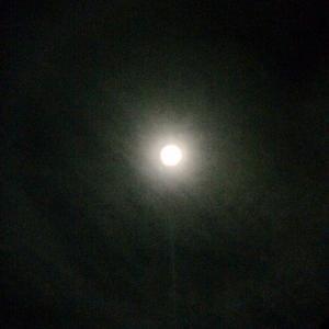 月のハロ 月暈