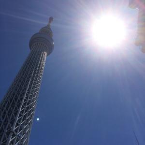 日曜日はの東京は…