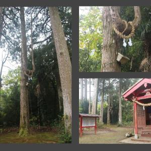 崎田稲荷神社