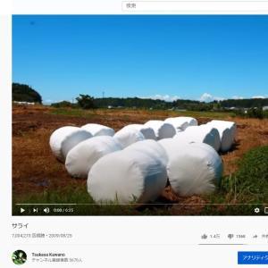 YouTube投稿動画「サライ」 視聴回数700万回を達成しました