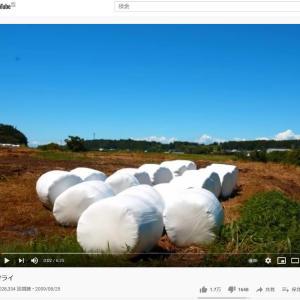 YouTube投稿動画「サライ」 視聴回数900万回を達成しました