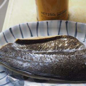 きずし(鯖)の丼