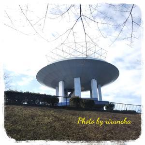 野島公園へお散歩 & 展望台