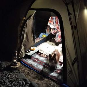 毎度恒例庭キャンプ & NEWギア