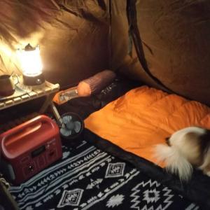 前室付きソロテントの虫対策、ワンコと一緒でも安心虫対策♪(強引www)