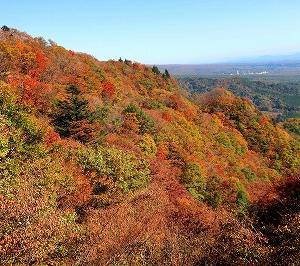 那須板室 県道266号塩那道路の紅葉がキレイ