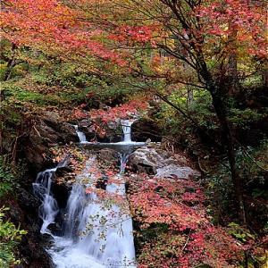 福島古殿町 塩沢不動滝の紅葉がキレイ