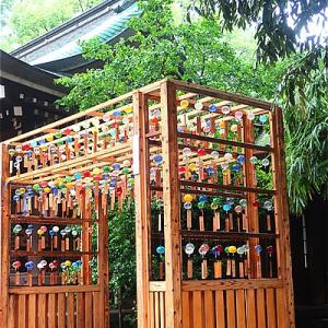 川越氷川神社の風鈴棚がキレイ